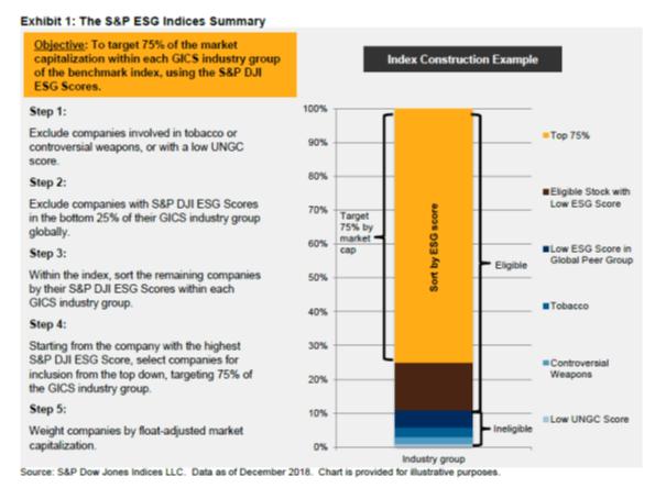 S&P ESG Index summary